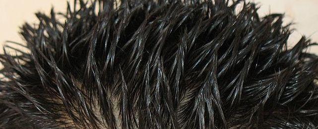 gel hairstyle